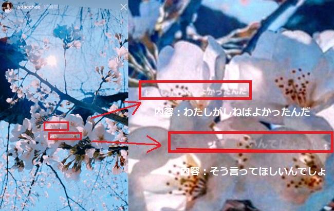桜 足立 梨花 足立梨花 インスタストーリーの桜写真の小さい白文字は捏造された!?