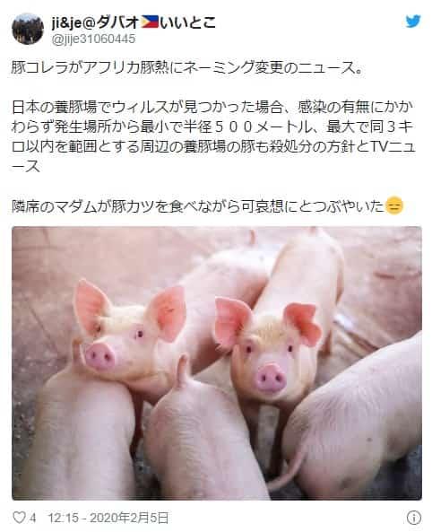 るアフリカ豚熱